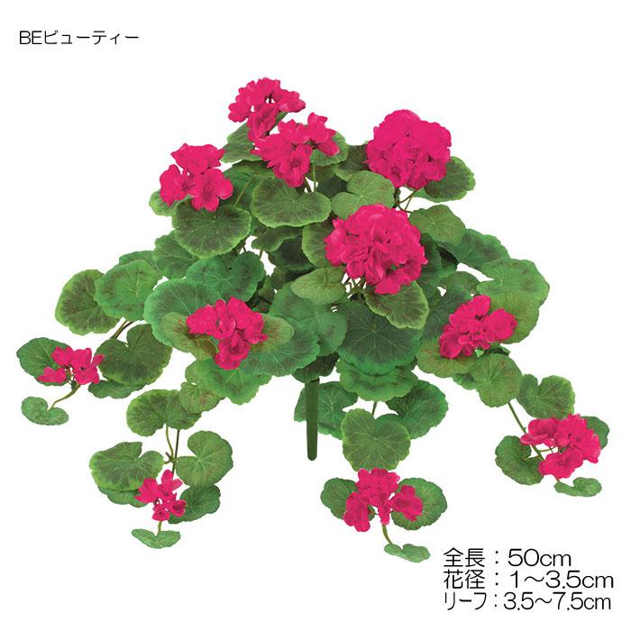 ゼラニウムブッシュ (L) 【送料区分:1】