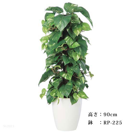 TOKAポトスへゴ-DX バーク付 90cm【メーカー直送品】【送料区分:2】