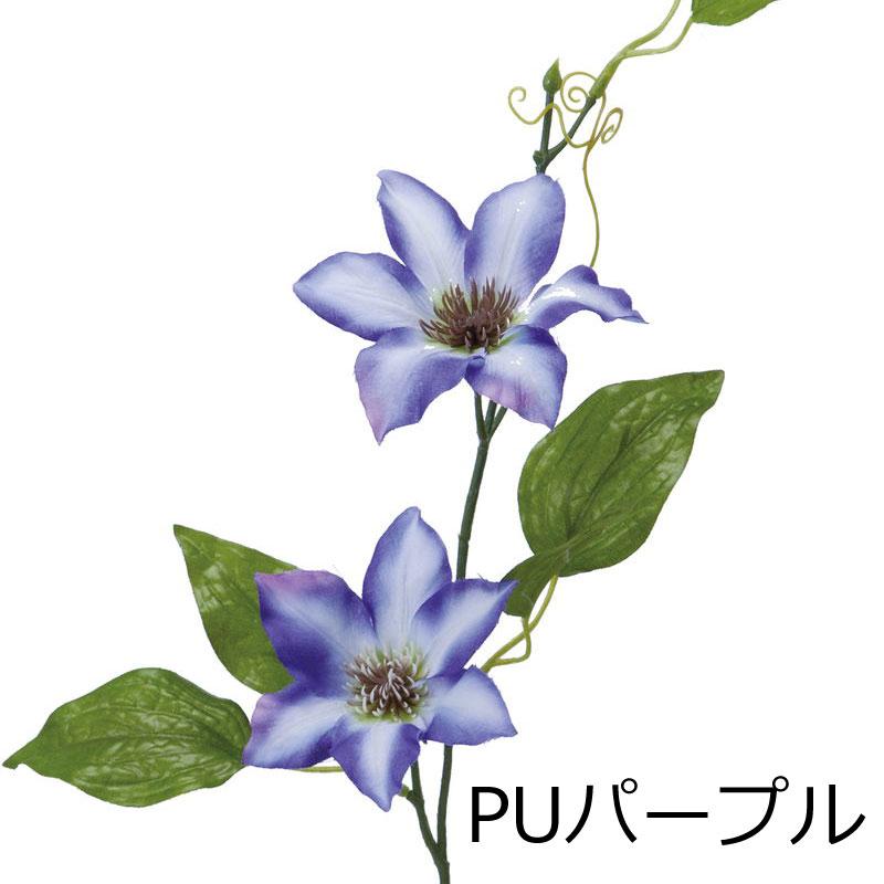 クレマチス【送料区分:1】