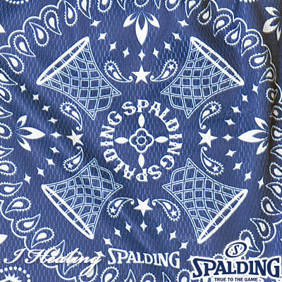 SPALDING ナップサック ペイズリー バスケットボール バッグ リュック スポーツ スポルディング SAK001PL PAISLEY