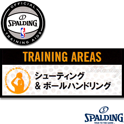 スポルディングNBA公認トレーニング スマートショット バスケットボール練習 シュート SPALDING8470CN