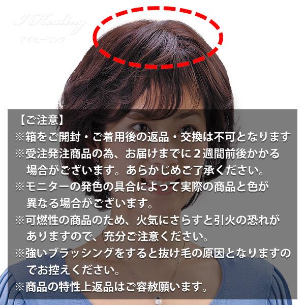 女性用 装着しやすいソフトネット ヘアピース 部分かつら SO-110