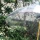 ホワイトローズ雨傘 十六夜桜WN ワイン 天然木いざよいビニール傘 長傘16本骨傘 レディース 婦人傘 日本製