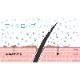 エンジェルエアー ビジェット マイクロバブルシャワーヘッド クロームメッキ 浴室用 節水シャワー 大型ヘッド おしゃれ ビッグヘッド 日本製 AngelAir Bijet TH-102