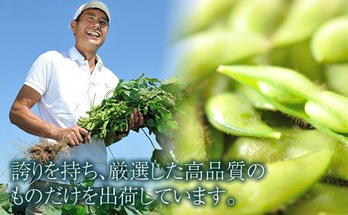 【予約販売商品 一番人気】黒埼産 黒埼茶豆・枝豆 (永井農園/黒埼)