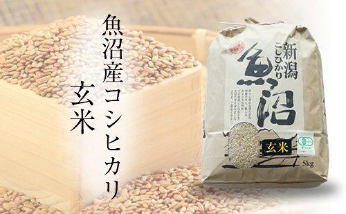 有機JAS認証 魚沼産こしひかり・玄米(魚沼わたなべ農園/小千谷)