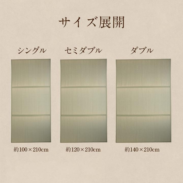 ヘルスケア 介護用品い草マットレスPro【送料無料】