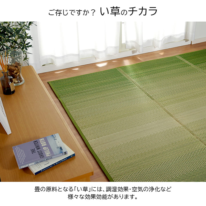 【送料無料】ござ おしゃれ ござ ラグ 「 選べる17種類 い草ラグ  」 180×180cm  180×240cm 191×191cm