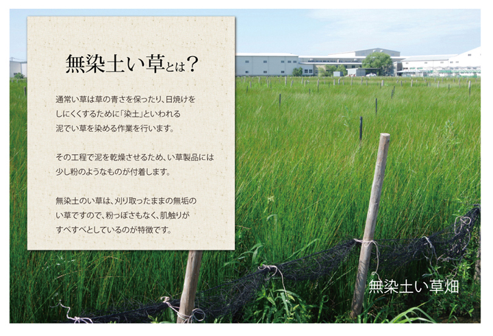 【メーカー正規品】アスクドクターズAskDoctors 敷きパッド 2サイズ 国産 い草【送料無料】