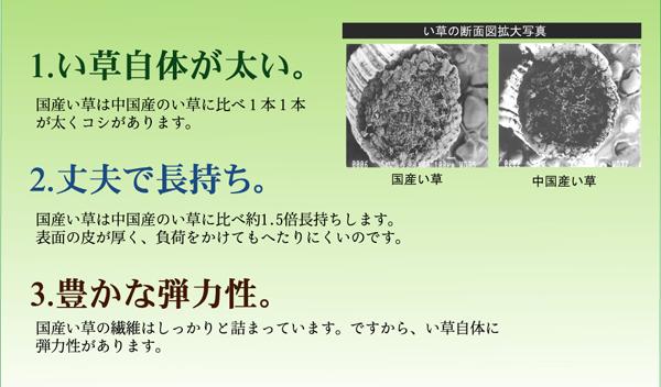 アスクドクターズ AskDoctor アスクベビー汗取P 寝ござ【送料無料】