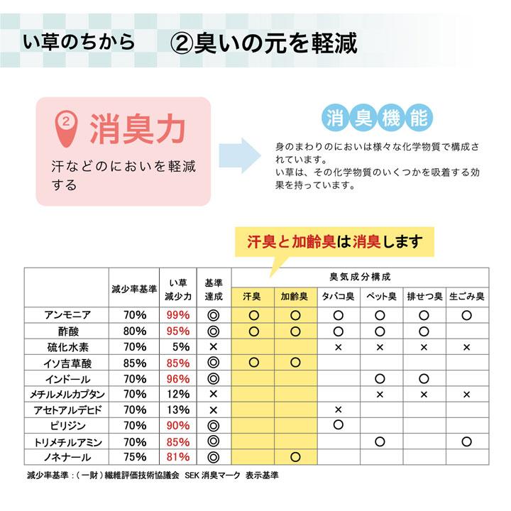 い草ラグ カーペット HSラスタ 撥水 【送料無料】