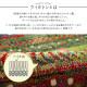ウィルトンラグ カーペット絨毯 マリア トルコ製 北欧 ラグマット おしゃれ かわいい リビング ダイニング センターラグ【送料無料】