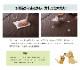 置き畳 ユニット畳 スカッシュ 半畳 6枚セット 水拭き 汚れにくい 国産 PP 【送料無料】