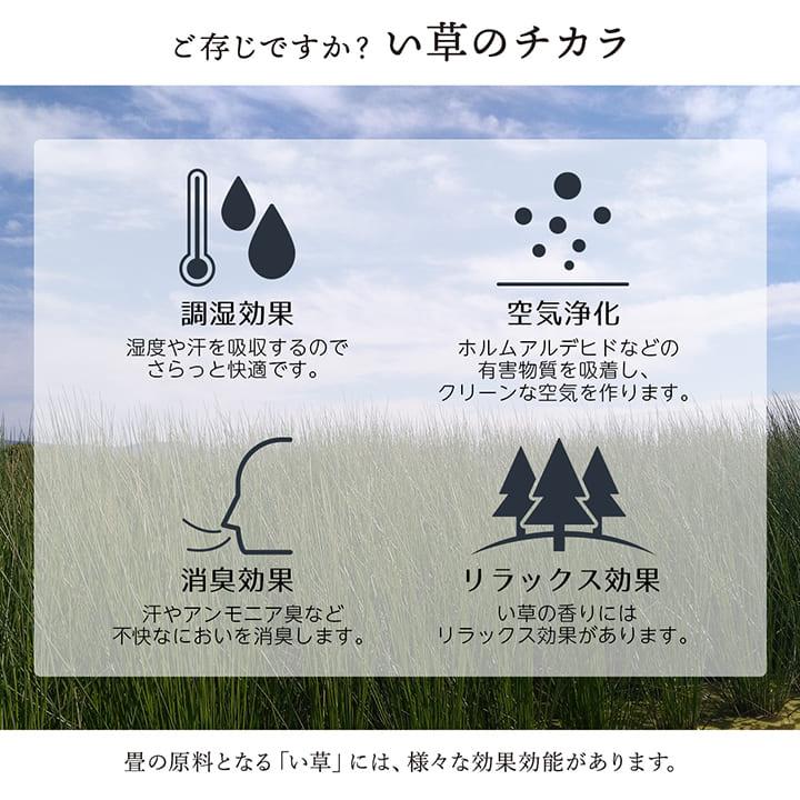 大自然 江戸間1畳/2畳/3畳/4.5畳/6畳/8畳【送料無料】