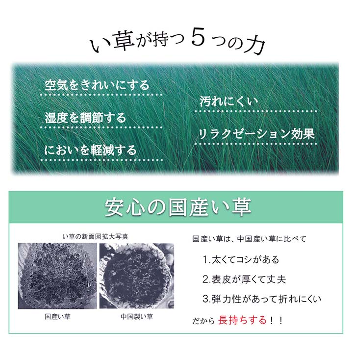 い草ラグカーペット Fサークル191×191cm【送料無料】