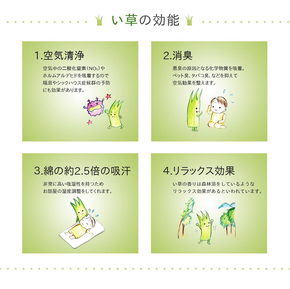 プレゼント ギフト おとこの枕 国産 い草【送料無料】