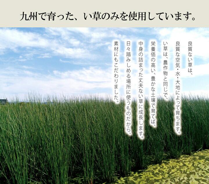 侍インソール い草 国産 消臭 【送料無料】