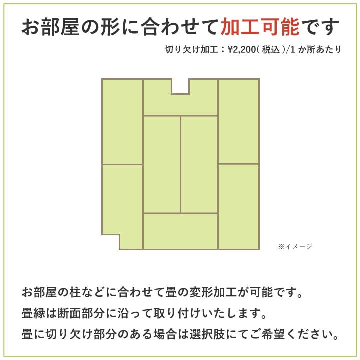 【表替え】国産い草畳「博多華織」畳替えコミコミパック(1畳〜8畳)