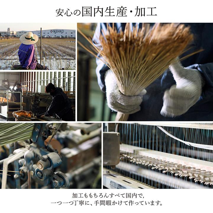 い草ラグ カーペット 京刺子 裏貼 国産【送料無料】
