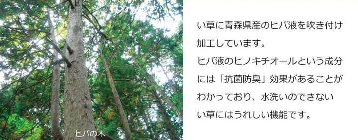 【送料無料】 い草 置き畳 ユニット畳 システム畳 82×164cm 「 あぐら 」 単品&セット 国産 日本製 長方形 簡単 軽量 防音 傷防止 子供部屋 キッズ ふっくら ジョイント セット 一畳 畳 ユニット 畳マット 和モダン