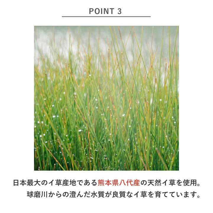 【新調】国産い草畳「せせらぎ」畳替えコミコミパック