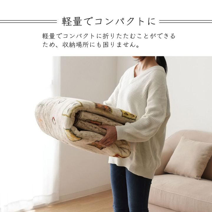 ラグカーペット 絨毯 DXラーズ 北欧 ラグマット おしゃれ かわいい リビング ダイニング センターラグ【送料無料】