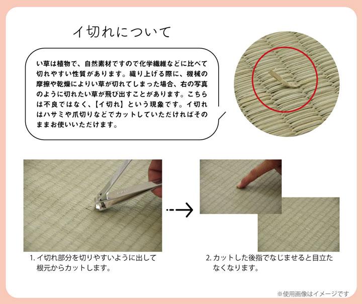 【送料無料】クリア い草フィットクッション
