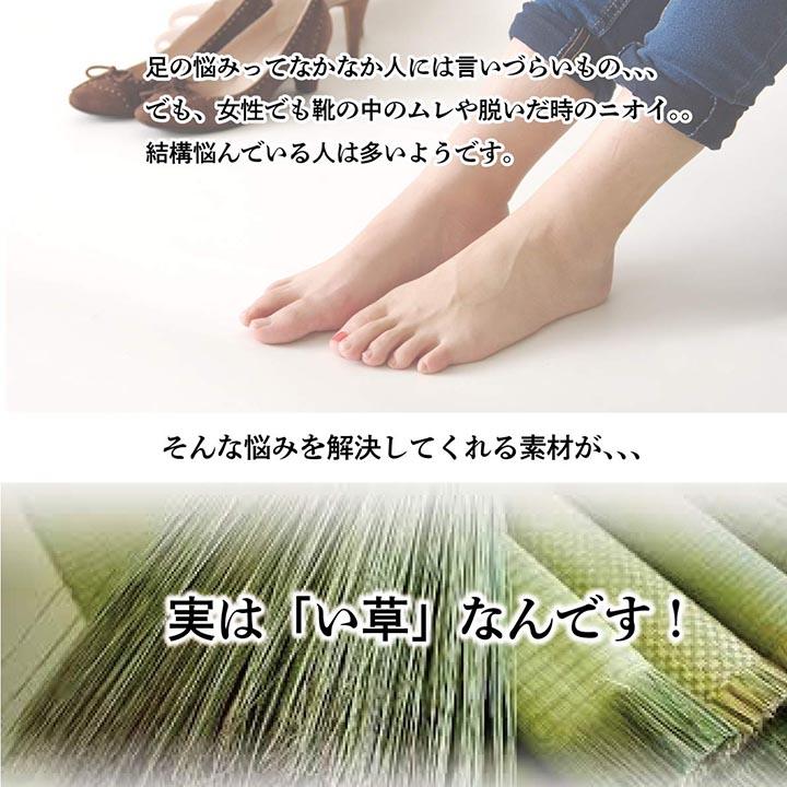 インソール い草 なでしこ 消臭 レディース キッズ 贈り物【送料無料】