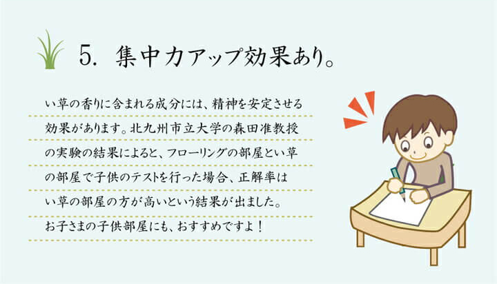置き畳 ユニット畳 カバー 汚れ防止 滑り止め 【送料無料】