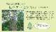 い草ござ上敷き 草津 江戸間/本間 2~8畳【送料無料】