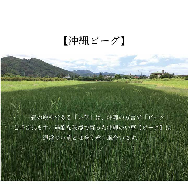 い草ラグ カーペットDX沖縄ビーグ カイハラデニム 国産 【送料無料】