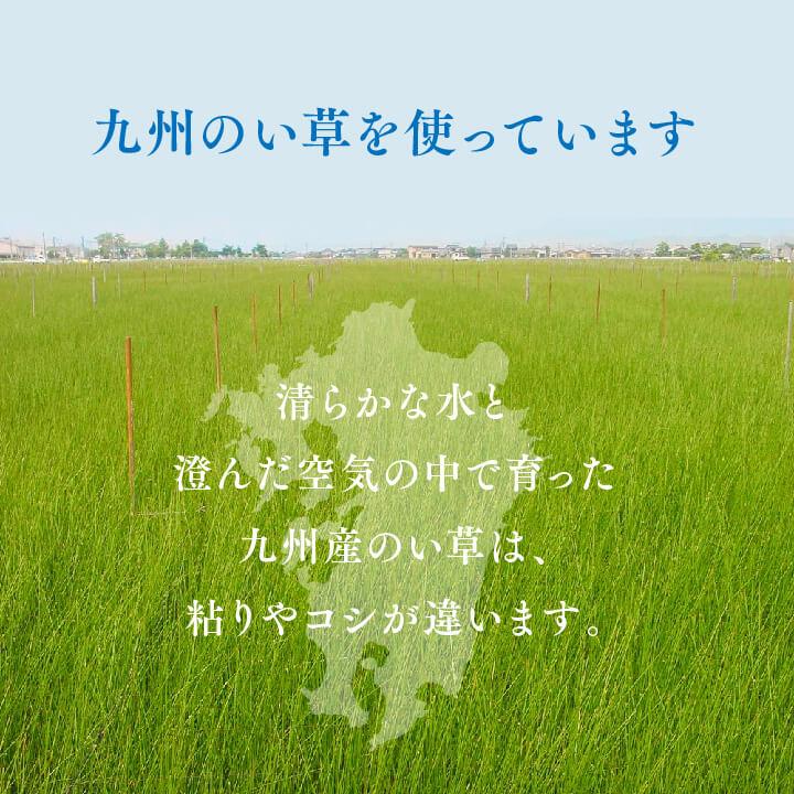 い草ござ上敷き まごころ 団地間/江戸間/本間/三六間/六一間 2~8畳【送料無料】