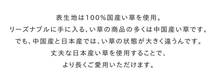 い草ラグ カーペット Fキャロル 滑り止め 国産【送料無料】