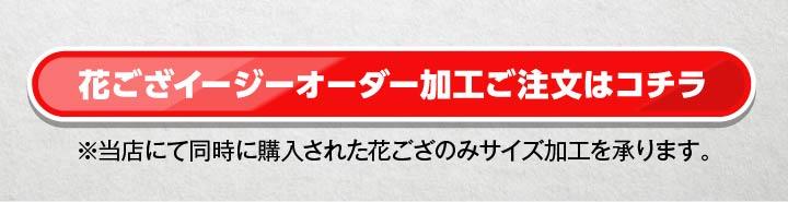 い草 ござ カーペット ラグ 敷詰 DXニューピア 裏貼 江戸間 本間 団地間 2~8畳 【送料無料】