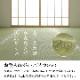 【送料無料】 日本製 い草 上敷き カーペット 「 白浜 」江戸間1~8畳