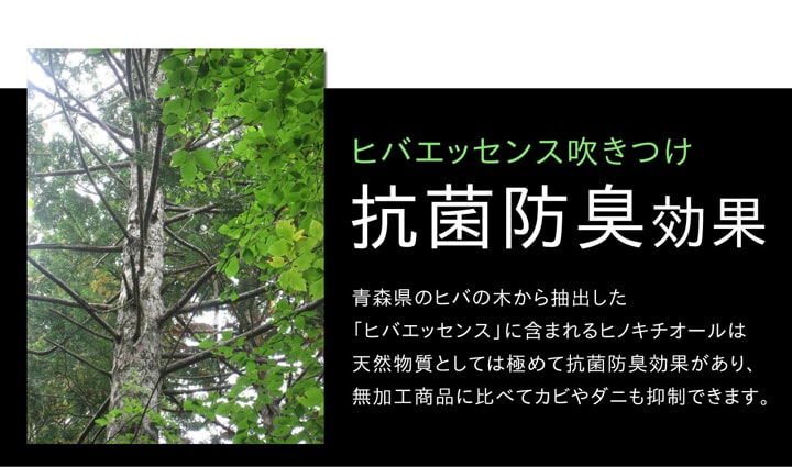 い草ラグ カーペット Fウォール 滑り止め 国産 【送料無料】