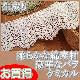 【お買得】 幅広9cm幅 綿素材の生成りバラケミカルレース(1m)