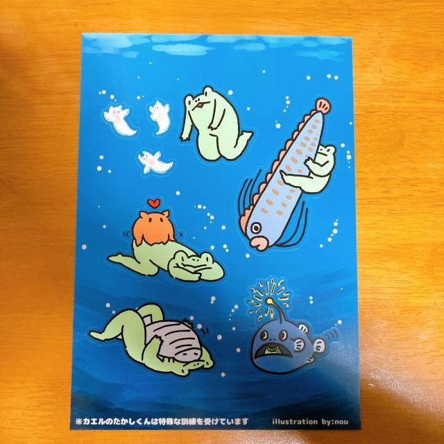 深海の生きものとカエルのたかしーるセット
