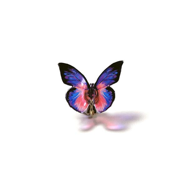 耳にとまる透ける蝶のイヤリング・シロチョウ系