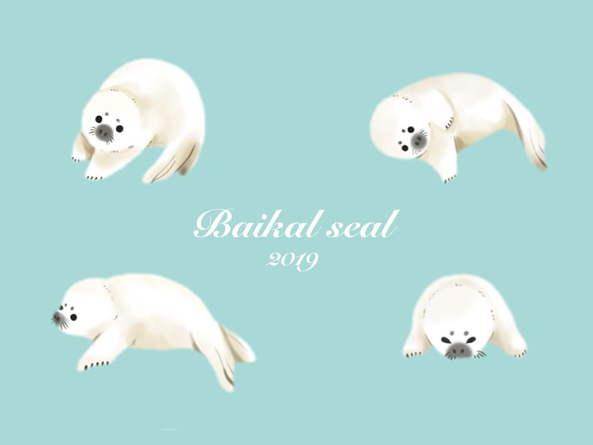 【いきもーる限定販売】バイカルアザラシの赤ちゃんのおふね型ポーチ