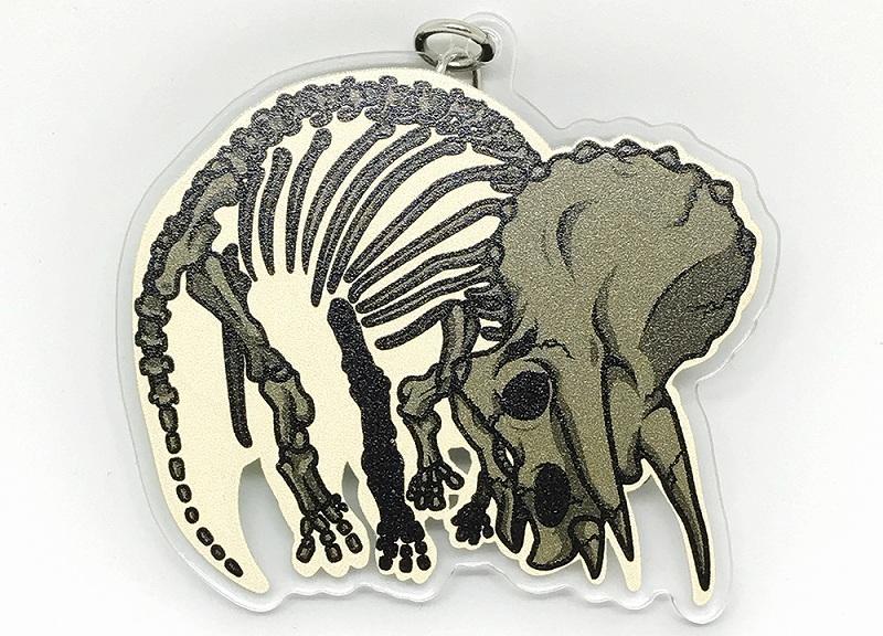 骨が透ける!アクリルキーホルダートリケラトプス