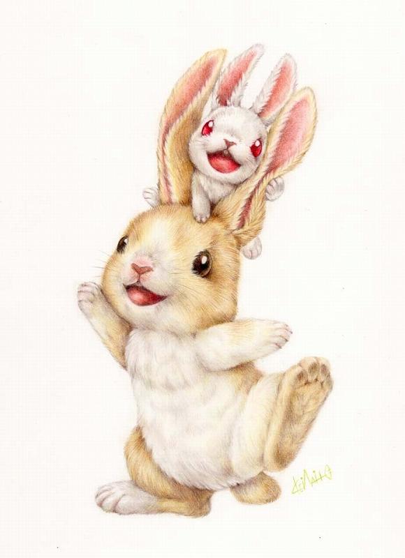 ウサギさんポストカード