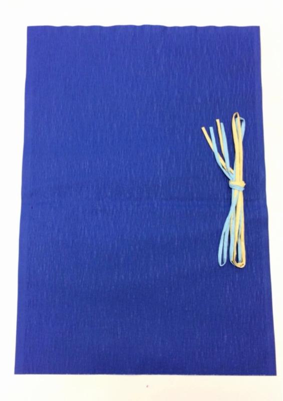 ギフトラッピング袋(大):500×350(mm)