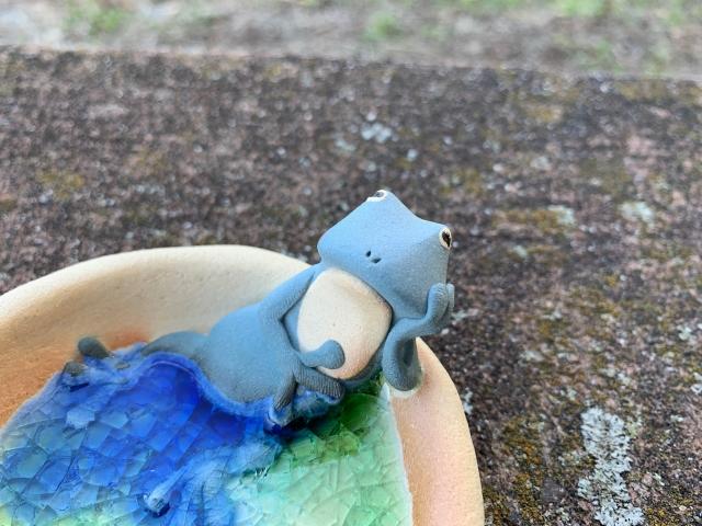 水浴び皿 カエル ブルー 2