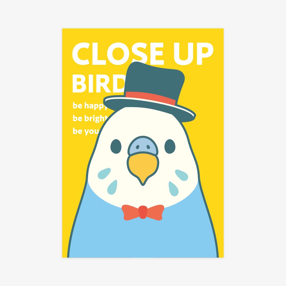クリアファイルA5(CLOSE UP BIRD / セキセイインコ)