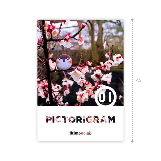 PICTORIGRAM �
