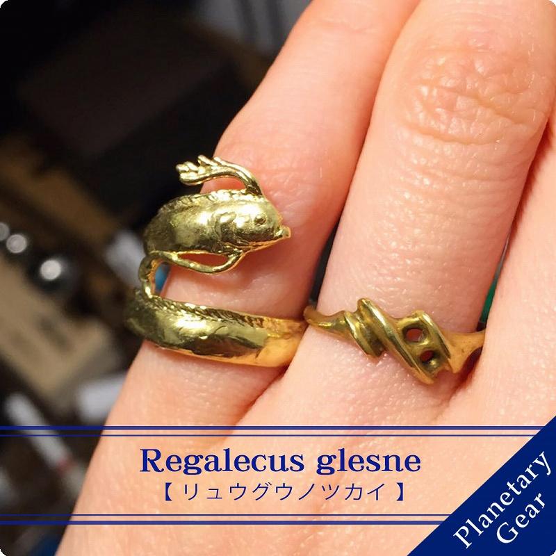 リュウグウノツカイのリング(深海魚)