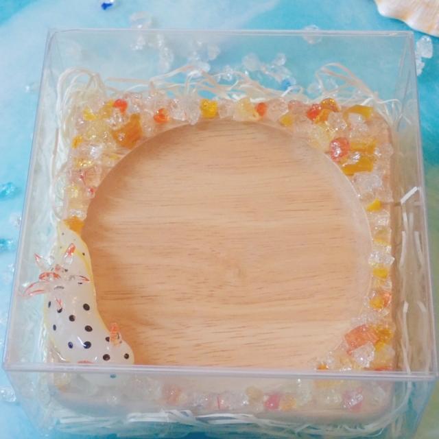 ウミウシコースター(シロ)