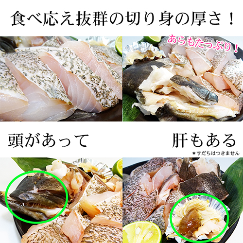 【AA】長崎県壱岐産 天然クエ  壱岐のたから クエ鍋セット 2〜3人前 送料込 天然くえ使用