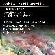 【AA】壱岐のたから 壱岐産一本釣り剣先イカ 刺身用(4-5人前)×2杯セット 1杯300g前後(加工後)送料込